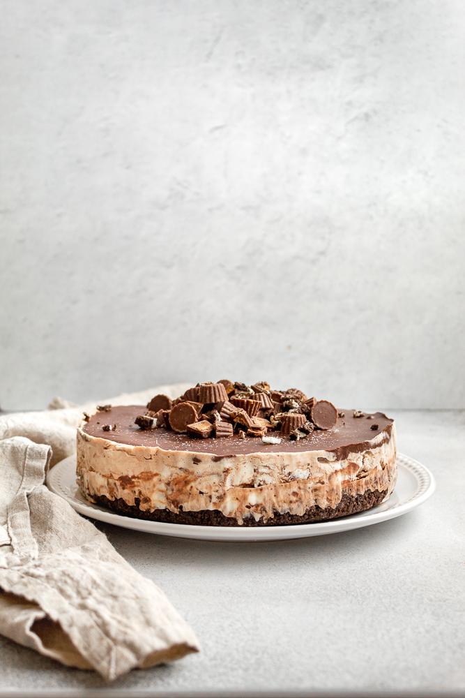 ice cream cake with chocolate ganache